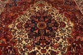 9' 6 x 13' Bakhtiar Persian Rug thumbnail