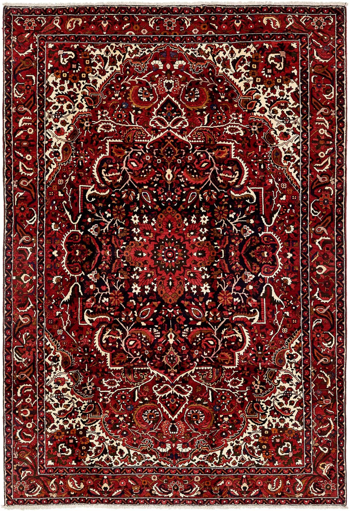 6' 11 x 10' 2 Bakhtiar Persian Rug main image