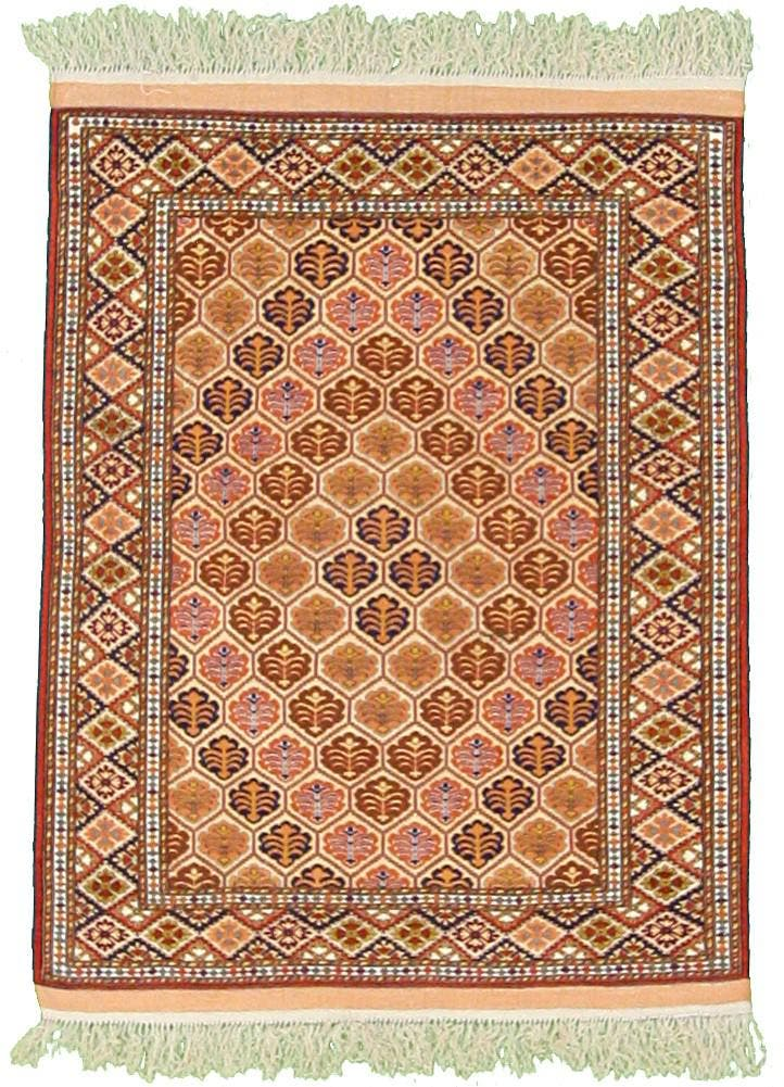 3' 11 x 5' 3 Torkaman Persian Rug main image