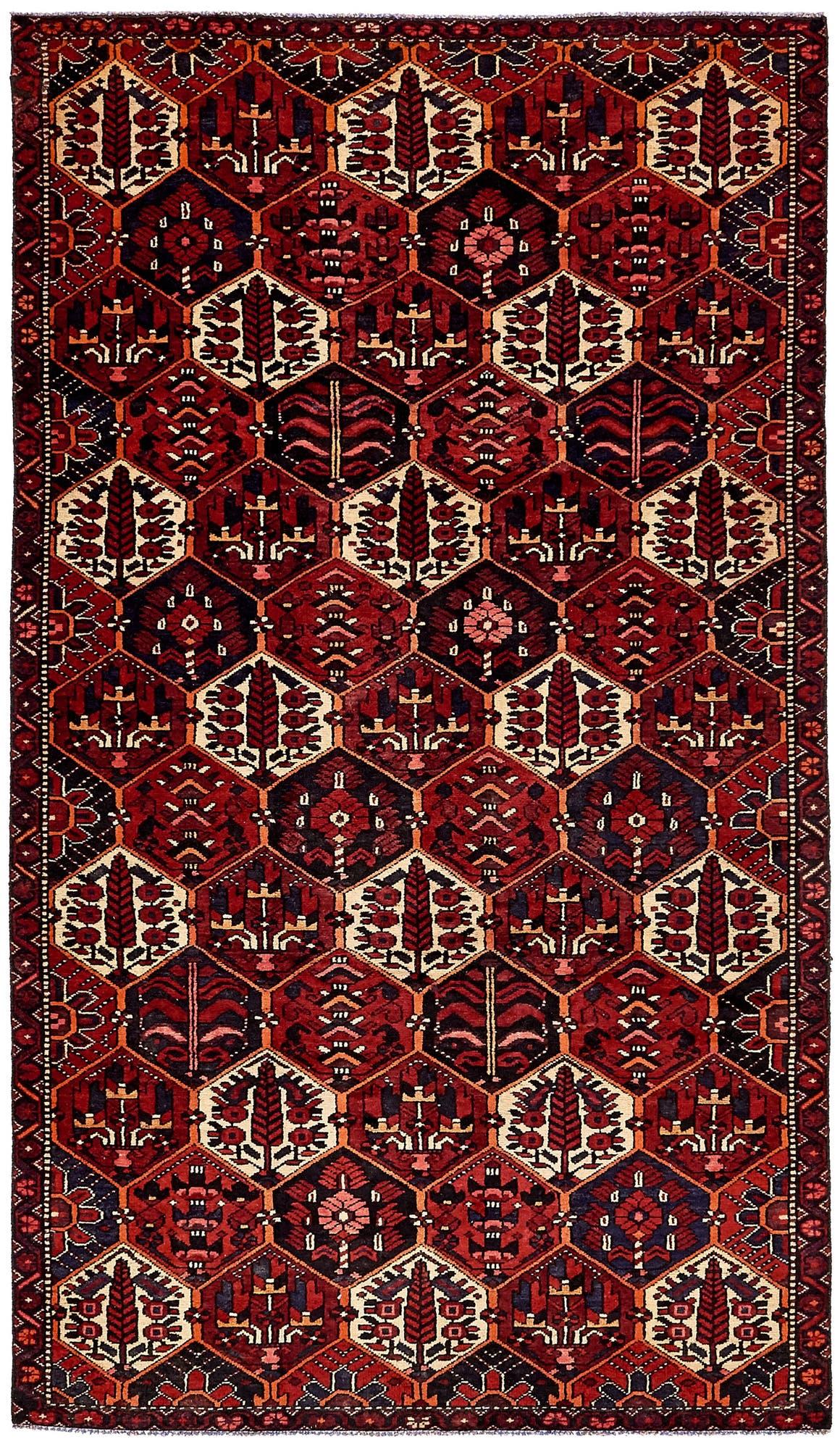 4' 11 x 9' Bakhtiar Persian Rug main image