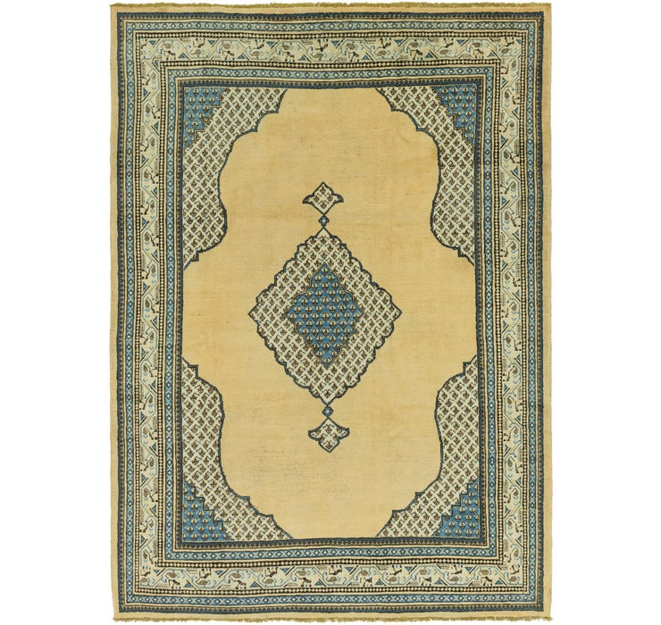 250cm x 360cm Botemir Persian Rug