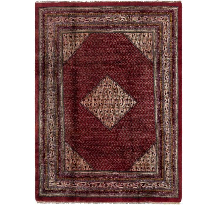 7' x 10' Botemir Persian Rug