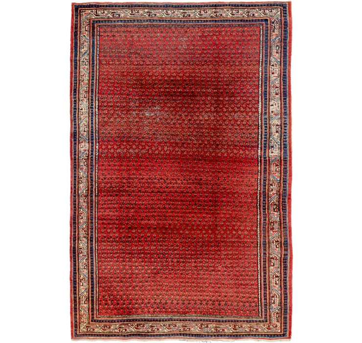7' x 10' 7 Botemir Persian Rug