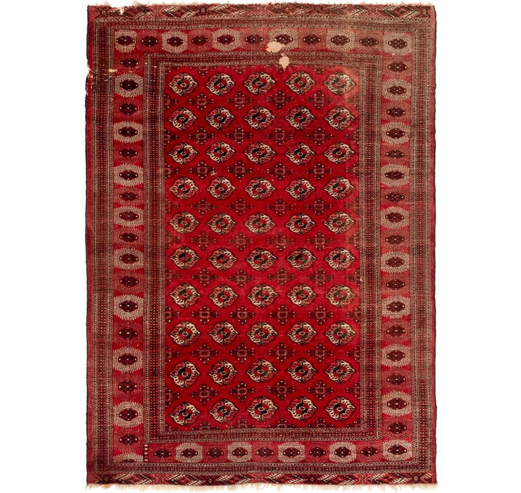 8' x 11' Torkaman Persian Rug