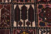 7' x 11' 7 Bakhtiar Persian Rug thumbnail