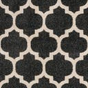 Link to Black of this rug: SKU#3115790
