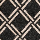 Link to Black of this rug: SKU#3116483