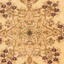 Link to variation of this rug: SKU#3120377