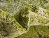 8' x 8' Damask Round Rug thumbnail