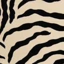 Link to variation of this rug: SKU#3125067
