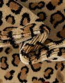 6' x 9' Safari Rug thumbnail