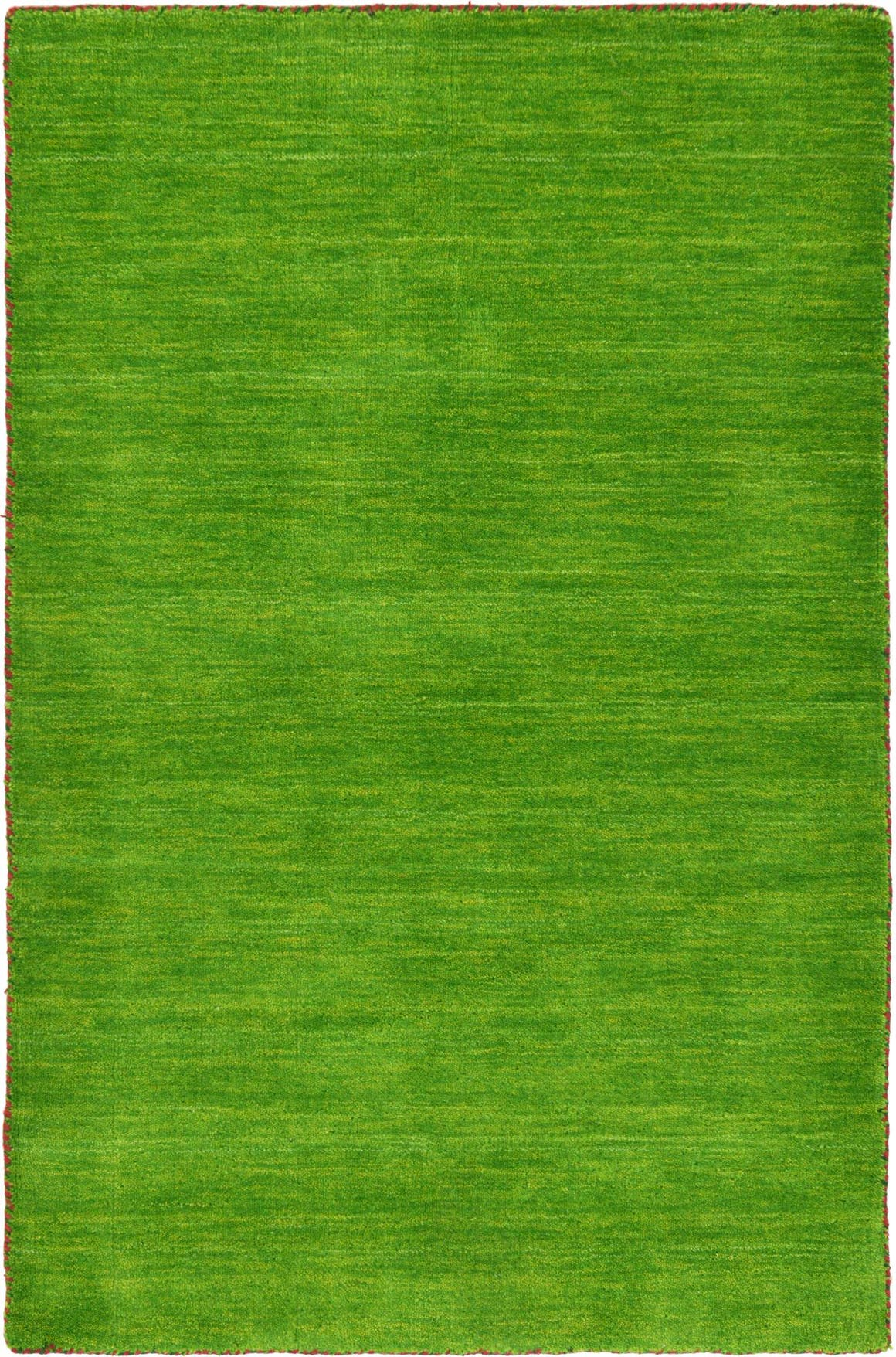 3' 3 x 5' 3 Solid Gabbeh Rug main image