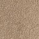 Link to Taupe of this rug: SKU#3127872