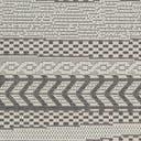 Link to Gray of this rug: SKU#3127141