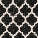 Link to Black of this rug: SKU#3128590