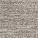 Link to Light Gray of this rug: SKU#3130968