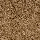 Link to Sandy Brown of this rug: SKU#3136666