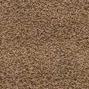 Link to Sandy Brown of this rug: SKU#3140783