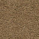 Link to Sandy Brown of this rug: SKU#3140763