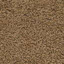 Link to Sandy Brown of this rug: SKU#3140773