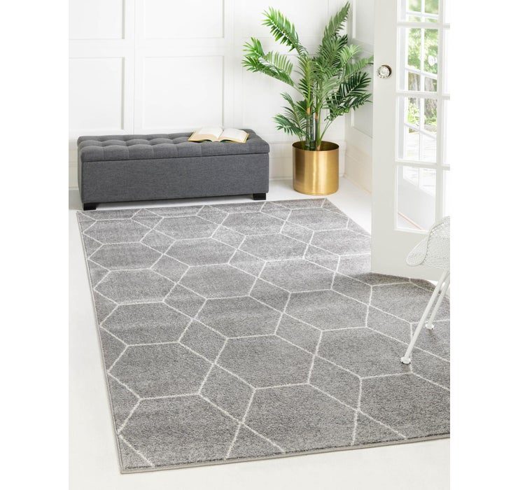 6' x 9' Trellis Frieze Rug