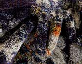 245cm x 245cm Arte Round Rug thumbnail image 8