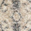 Link to Gray of this rug: SKU#3143981