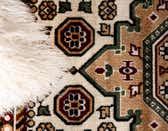 8' 2 x 9' 10 Gharajeh Rug thumbnail