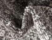5' x 8' Bexley Rug thumbnail