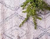 4' 7 x 4' 7 Artemis Round Rug thumbnail