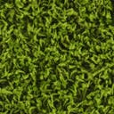 Link to Grass Green of this rug: SKU#3145708