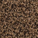 Link to Sandy Brown of this rug: SKU#3145707