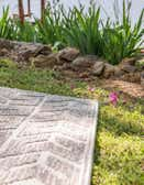 Sabrina Soto 8' x 10' Sabrina Soto Outdoor Rug thumbnail