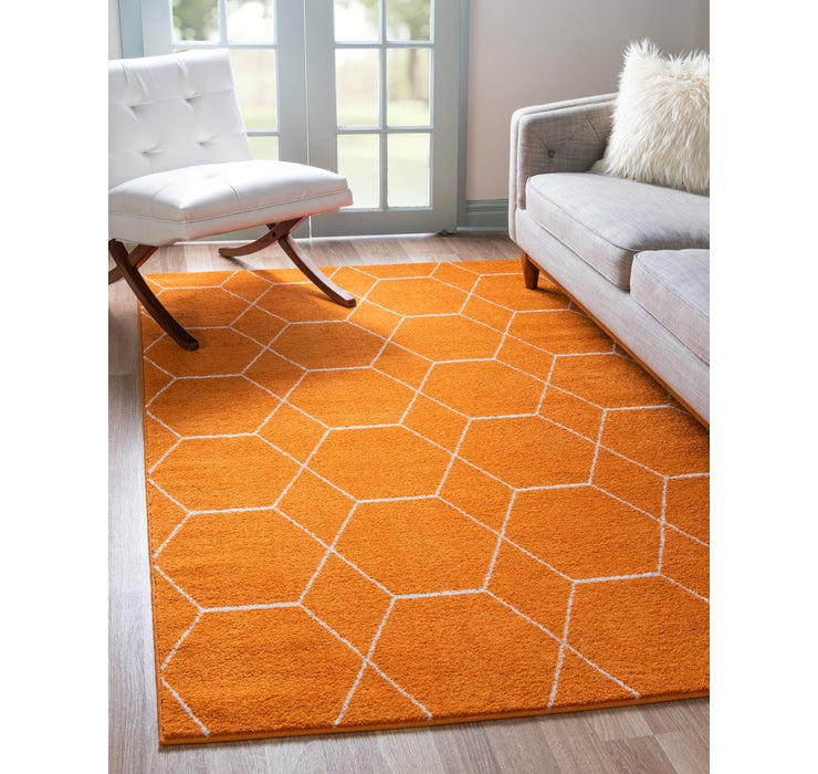Image of 100cm x 160cm Trellis Frieze Rug