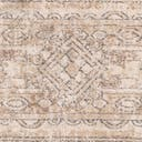 Link to Ivory of this rug: SKU#3147199