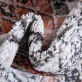 7' x 7' Leipzig Round Rug thumbnail