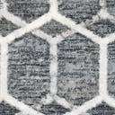 Link to Grey of this rug: SKU#3148940