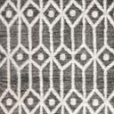 Link to Gray of this rug: SKU#3149116