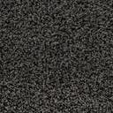 Link to Graphite Gray of this rug: SKU#3151334