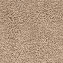 Link to Taupe of this rug: SKU#3151296