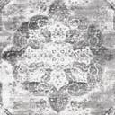 Link to variation of this rug: SKU#3151866