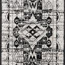 Link to Black and White of this rug: SKU#3147191