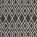 Link to Charcoal Gray of this rug: SKU#3152280
