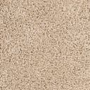Link to Taupe of this rug: SKU#3154598