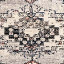 Link to Gray of this rug: SKU#3155126