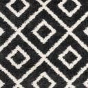 Link to Black and White of this rug: SKU#3143748