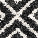 Link to Black and White of this rug: SKU#3143757