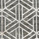 Link to Gray of this rug: SKU#3166097